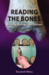 Reading the Bones: Activity, Biology and Culture by Elizabeth Weiss