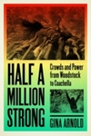 Half a Million Strong: Crowds and Power from Woodstock to Coachella by Gina Arnold